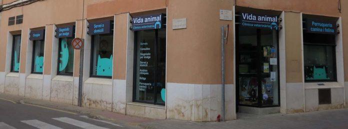 La clínica veterinària Vidaanimal és un dels negocis de Santpedor que obrirà el 12 d'octubre FOTO.VIDAANIMAL