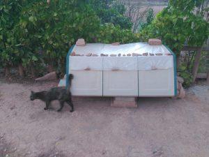 Menjadora montada per Cuigat en una de les colònies de gats de Santpedor